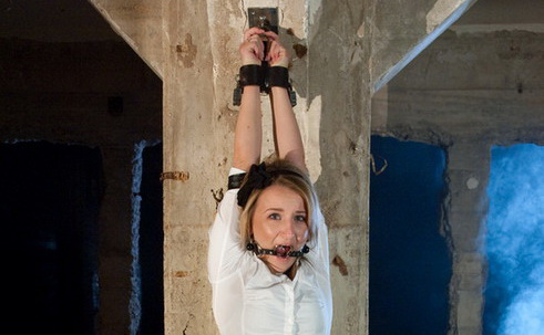 New bdsm desire about damsel